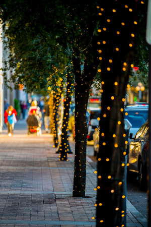 File: Stone Avenue holiday lights
