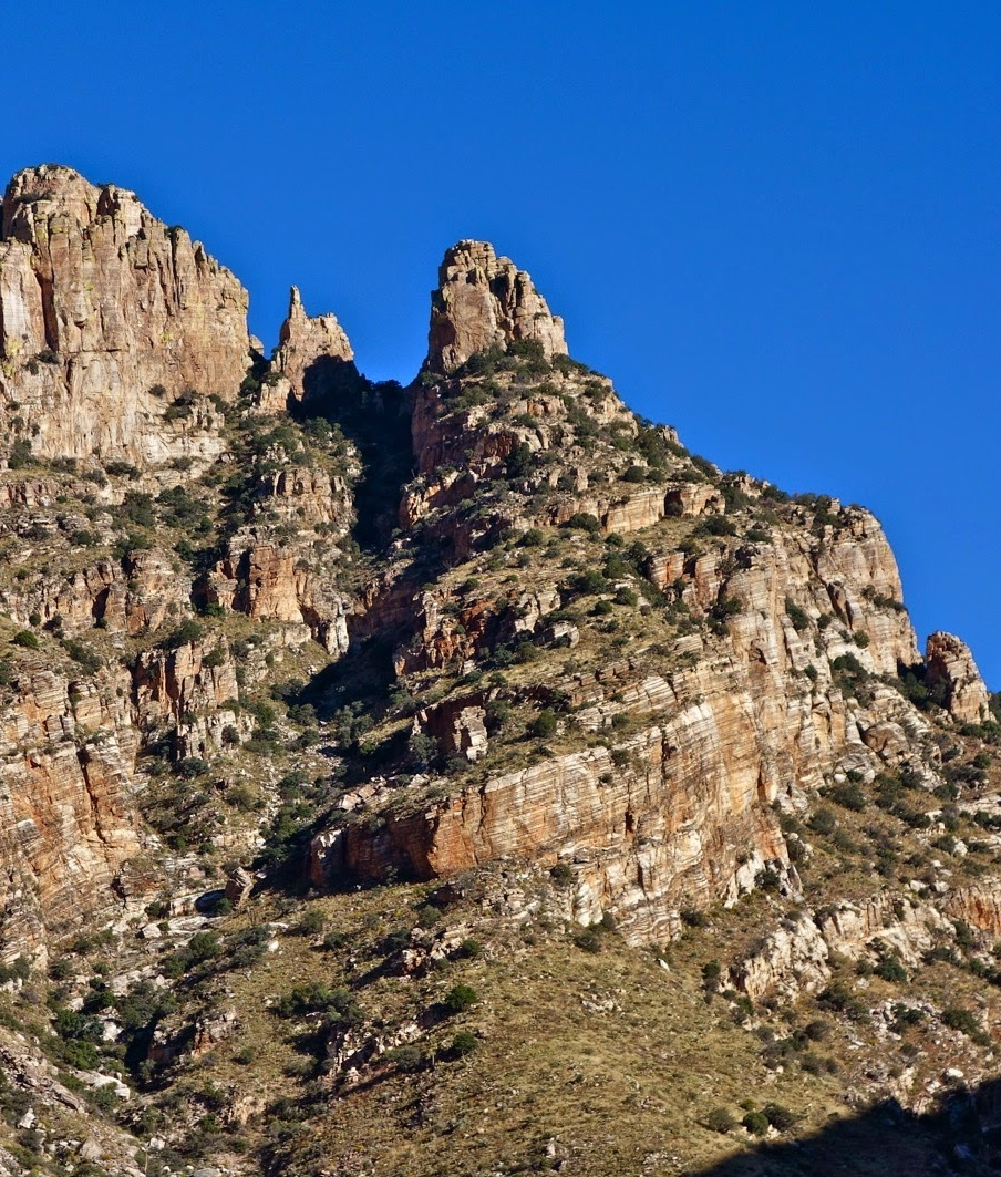 Hike Richard McKee Finger Rock Trail • Richard McKee Finger Rock Trailhead, 7100 N. Alvernon Way • Friday, December 1, 8:30 a.m. - 11:30 a.m. Photo credit: © Debra Van Winegarden 2014