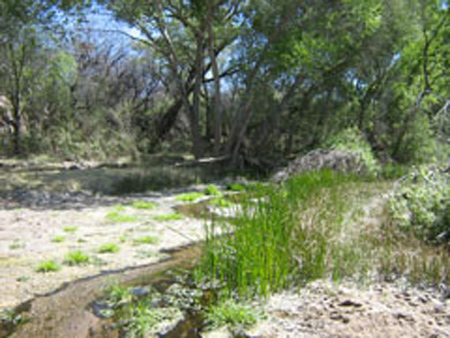 Class H habitat supported by intermittent stream flow