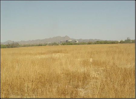 (Photo 2) Retired agricultural field pre-construction, 2007
