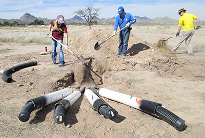 Volunteers construct artificial burrows to support the reintroduction of Burrowing Owls to the project site.