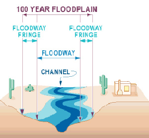 Diagram of a typical riverine floodplain.
