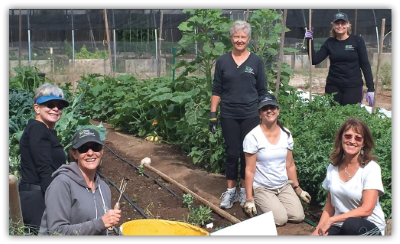Tucson Cancer Conquerors in garden