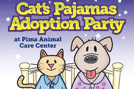 Cat's Pajama Party