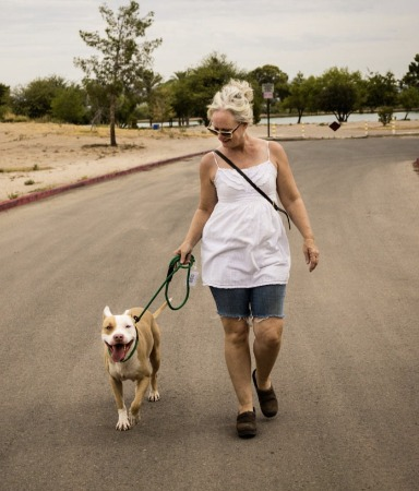 Walk a PACC dog on July 4