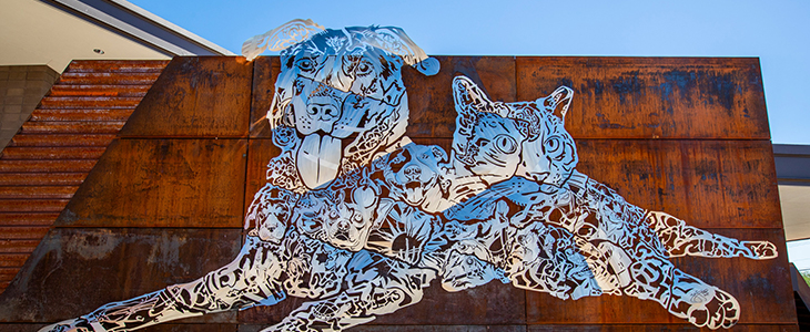 Image of Pima Animal Care art installation